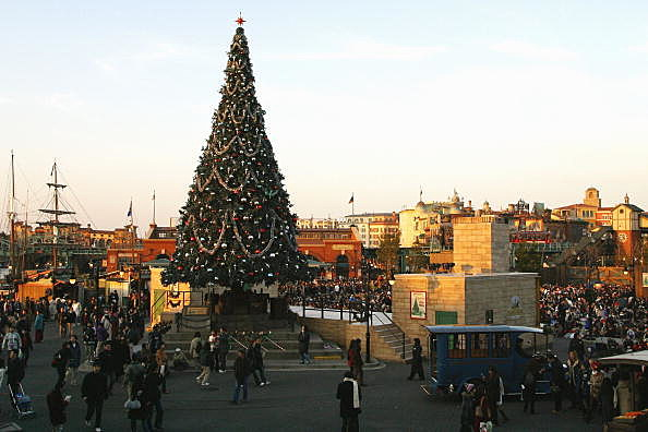 People Look At A Christmas Tree
