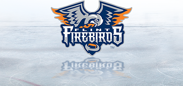 flintfirebirds.com